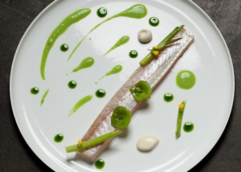 Whiting - Pastis - Fennel by David Toutain